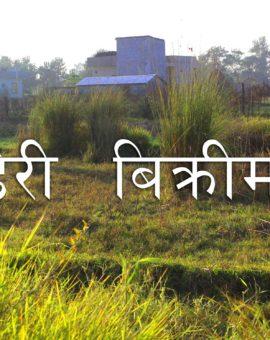 10 Dhur Land and for sale in Sankharnagar, Tilottama