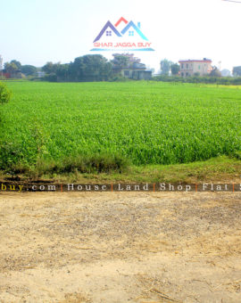 Double mohada 1 Kattha Land, Manigram, Rupandehi is for sale