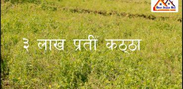 4.5 Bigha land is for sale, 3 lakh per dhur
