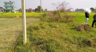 Land for sale in Devdaha-2, Asnaiya Rupandehi
