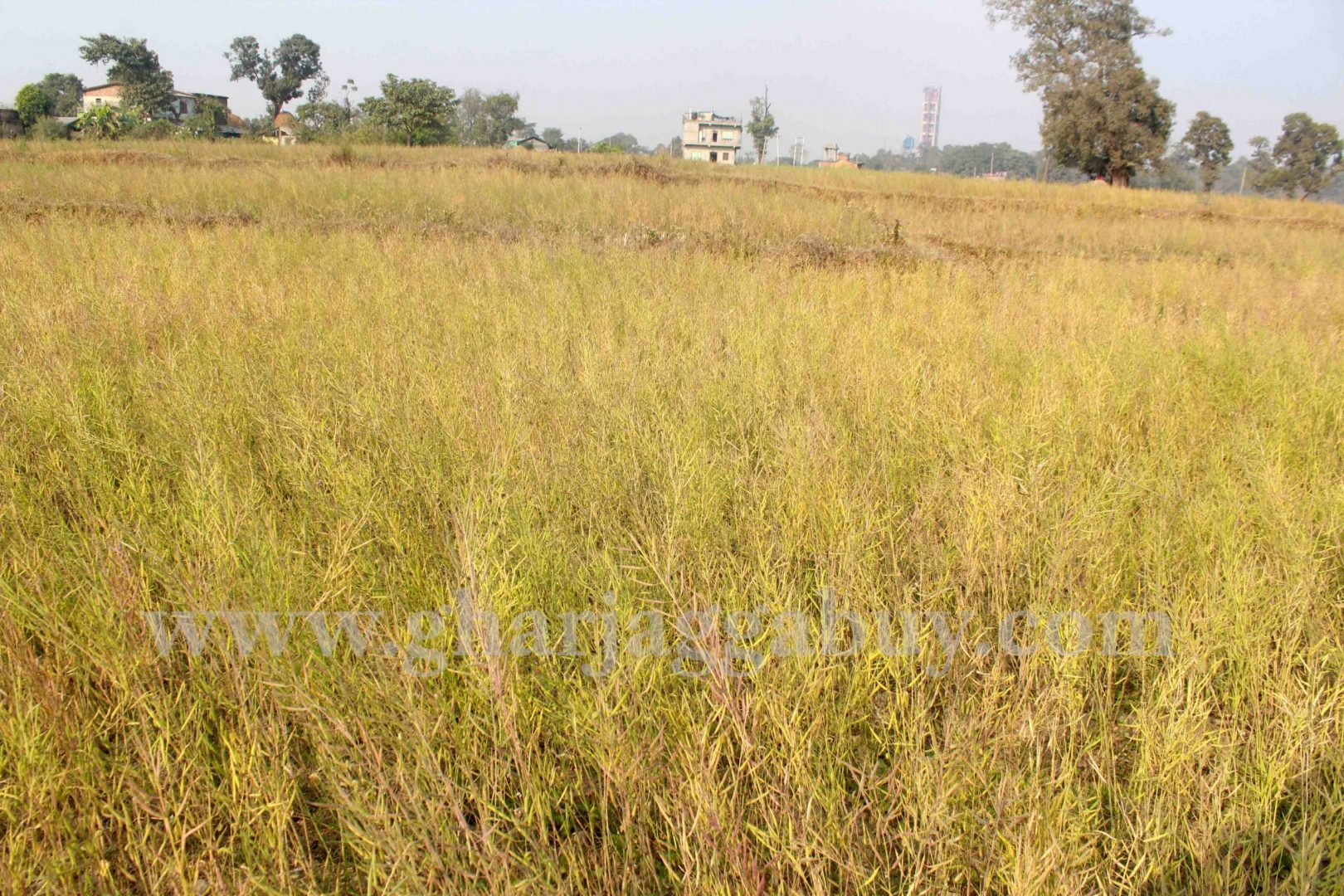 Cheap land for sale in Nawalparasi, Sunawal Nepal
