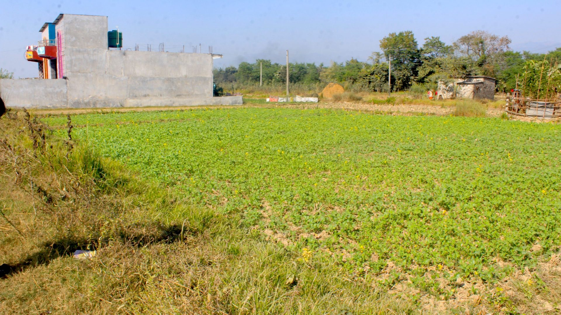 Cheap land for sale in Sunawal, Nawalparasi Argouli, Nepal