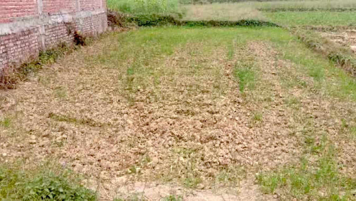 Land for sale in Murgiya, Rupandehi, Nepal