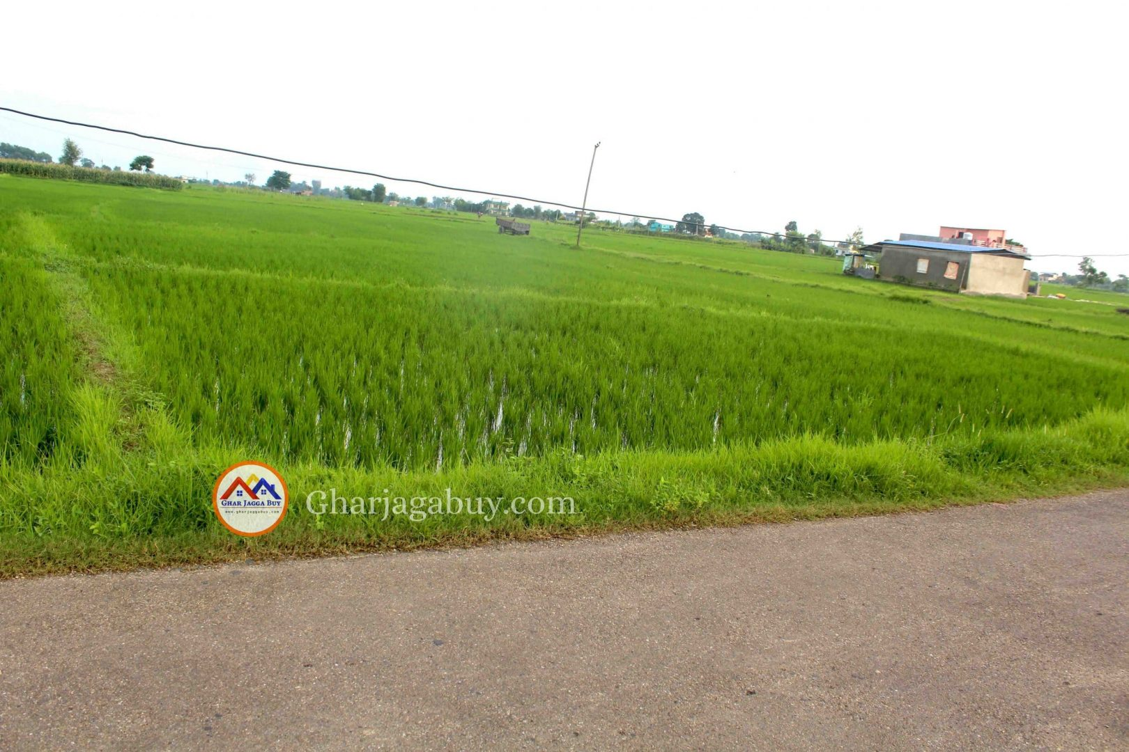 Cheap land for ghaderi is sale in Tilottama Rupandehi