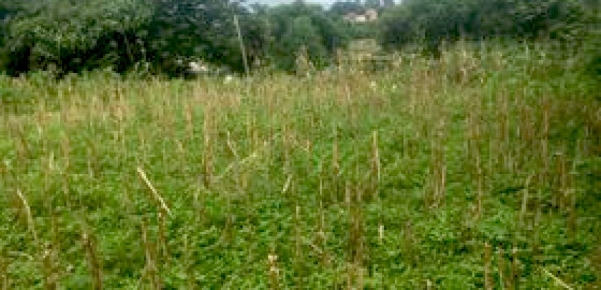 Cheap house and land is for sale in Palpa, Rampur Nepal
